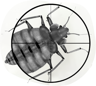 Pest services in bhubaneswar